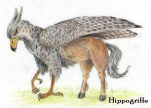 Les hippogriffes