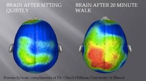 Savais-vous que l'exercice est bon pour la santé ?