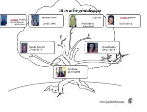 Voici mon arbre généalogique