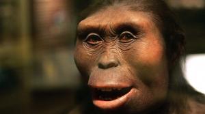 Lucy la femme de 3 180 000 ans passés