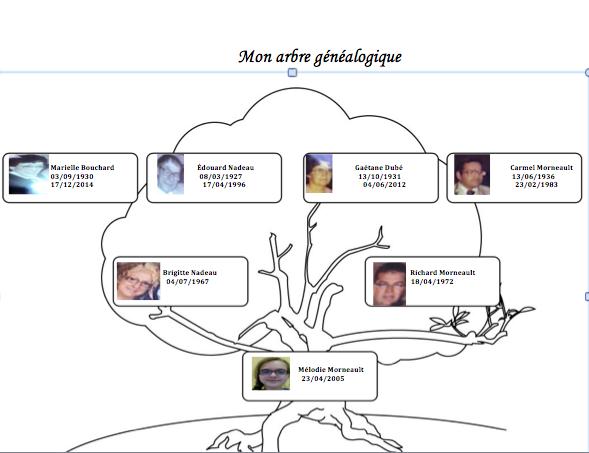 Mon arbre Généalogique