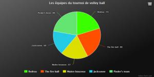 Les équipes du tournoi de volley ball